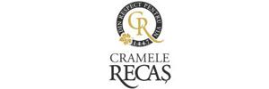 Logo Cramele Recas Scaun Birou Reglabil - Electric - Stand Up